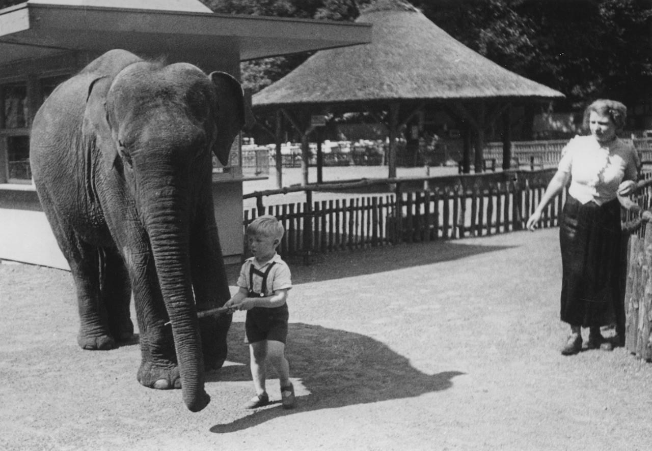 Bürgerpark, Tiergarten um 1935